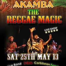 The-reggae-magic-1367144755