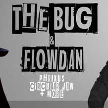 The-bug-flowdan-1486418398