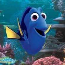 Finding-dory-1486285009