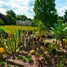 Heritage-and-history-of-the-birmingham-botanical-gardens-1566149802