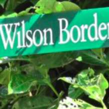 Guided-tour-ernest-h-wilson-s-plants-1580414699