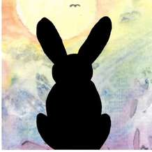 Black-rabbit-1582571455