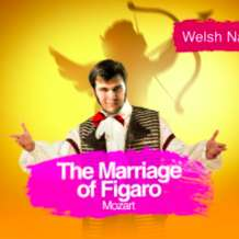 Wno-the-marriage-of-figaro-1551092593