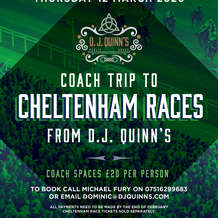 Coach-trip-to-cheltenham-races-from-dj-quinn-s-1579098389