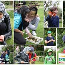 Wildlife-trust-for-birmingham-and-black-country-wild-family-fun-day-1499949130