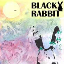 Black-rabbit-1567974297