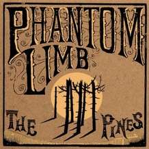 Phantom-limb