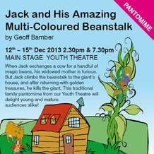 Jack-his-amazing-multi-coloured-beanstalk-1373916998