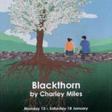 Blackthorn-1568053463