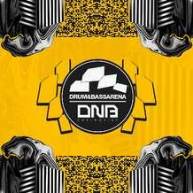 Drum-bassarena-x-dnb-collective-1551295649