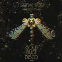 Gold-dust-disco-1551347977