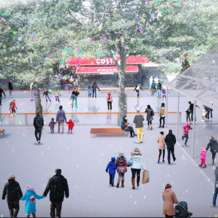 Christmas-ice-rink-and-mr-frosty-s-snow-garden-1445346600