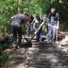 Moseley-bog-joy-s-wood-volunteer-day-1492205437