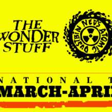 The-wonder-stuff-ned-s-atomic-dustbin-1509910626