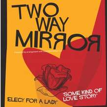Two-way-mirror-1386021543