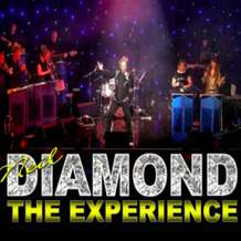 Nel-diamond-the-experience-1578068473