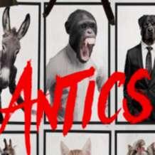 Antics-1546248747