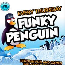 Funky-penguin-1523351673