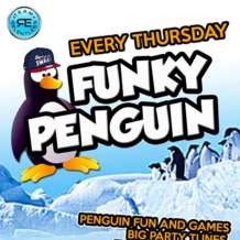 Funky-penguin-1556354588