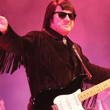 Barry-steele-as-roy-orbison-1361404656
