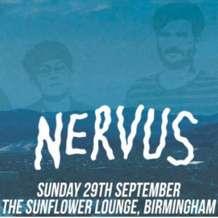 Nervus-1566848953