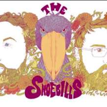 The-shoebills-1583097614