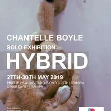 Hybrid-chantelle-boyle-solo-exhibition-1553102413