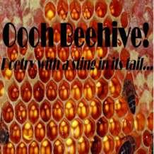 Oooh-beehive-poetry-slam-1527445415