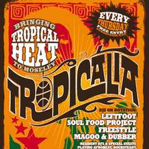 Tropicalia-5-1338409607