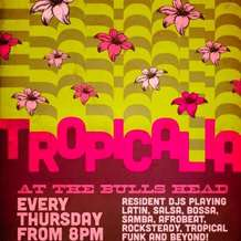 Tropicalia-1365108404