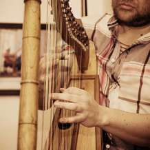 Latin-harp-night-1504183685