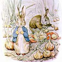 Peter-rabbit-1482846261