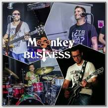 Monkey-business-1557347604