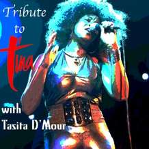 A-tribute-to-tina-turner-1485203034