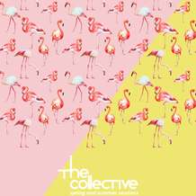 Uab-collective-1471080917