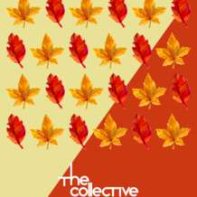 The-collective-1546505975