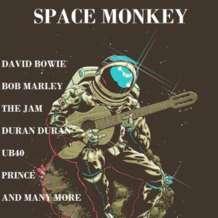 Space-monkey-1544258698