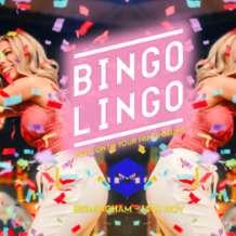 Bingo-lingo-1541796599