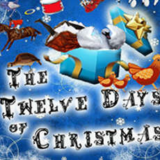 The-twelve-days-of-christmas-1469522406