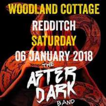 The-after-dark-band-1515018414