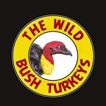 Wild-bush-turkeys-1523561061