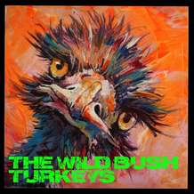 The-wild-bush-turkeys-1571146857
