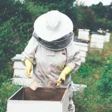 Introduction-to-beekeeping-1511713085