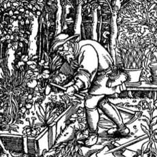 Introduction-to-garden-history-6-week-course-1523626183